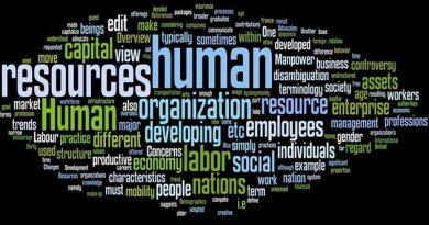 insan kaynakları nedir