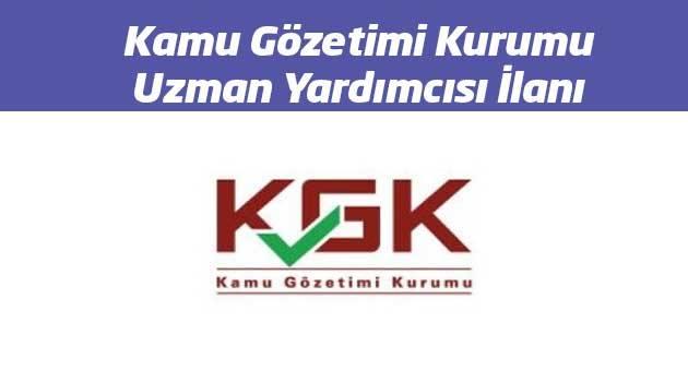 kamu gözetimi kurumu uzman yardımcısı ilanı